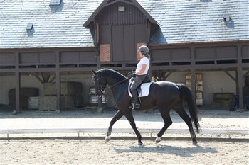 Photo: Dressage lesson in the big outdoor arena, surrounded to all sides by the beautiful 16th Century buildings